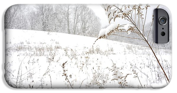 Winter Storm iPhone Cases - Pasture Field in Winter iPhone Case by Thomas R Fletcher