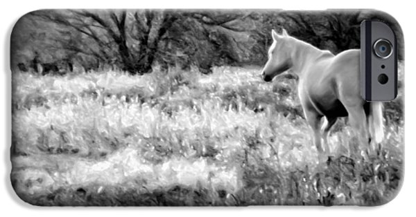 American Saddlebred Art iPhone Cases - Pasture v5 iPhone Case by F Leblanc