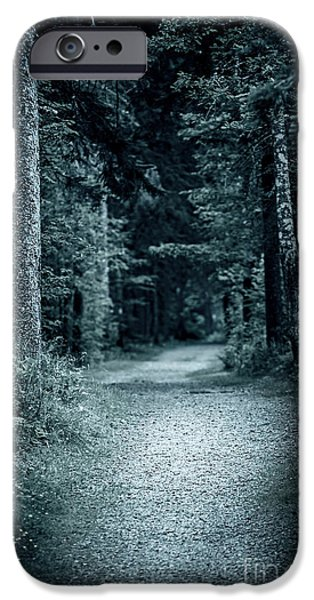 Eerie iPhone Cases - Path in night forest iPhone Case by Elena Elisseeva