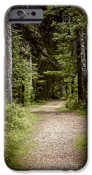 Eerie iPhone Cases - Path in old forest iPhone Case by Elena Elisseeva