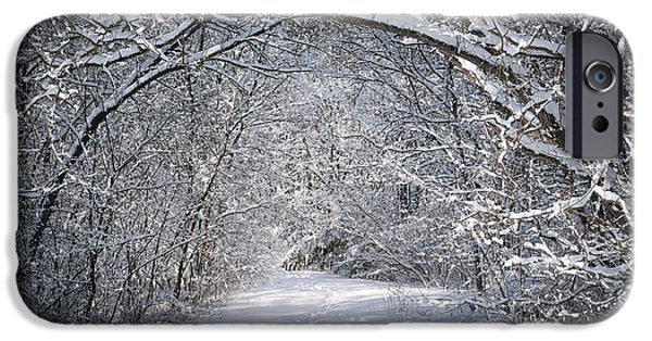 Snowy iPhone Cases - Path in snowy winter forests iPhone Case by Elena Elisseeva