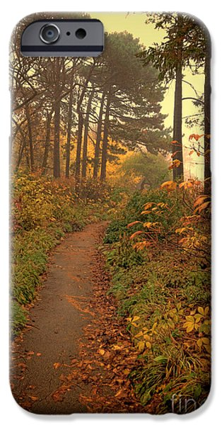 Recently Sold -  - Fog Mist iPhone Cases - Path in the Autumn Woods iPhone Case by Jill Battaglia