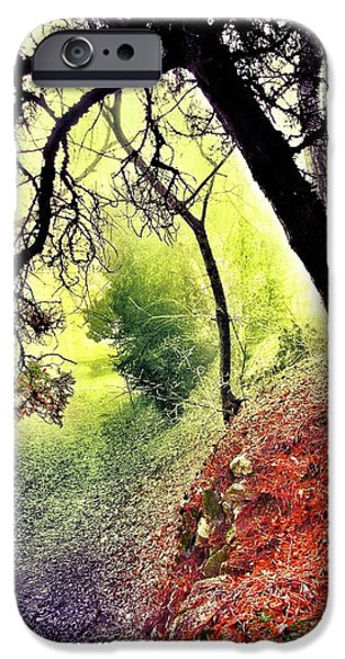 Visionary Artist iPhone Cases - Path iPhone Case by Marianna Mills