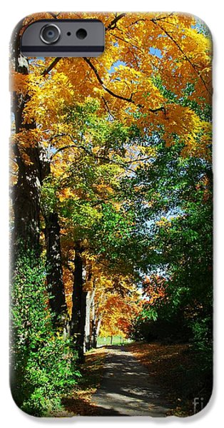 Covington iPhone Cases - Path Of Gold iPhone Case by Mel Steinhauer