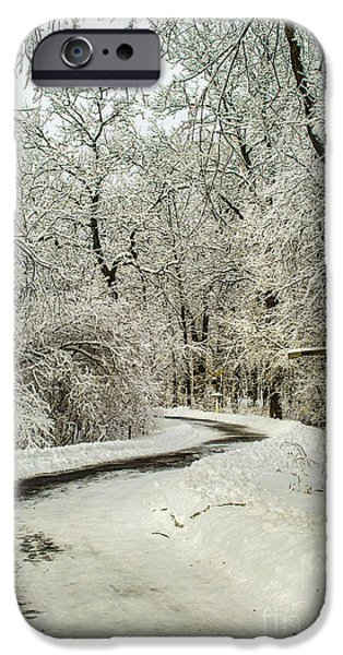 Winter Storm iPhone Cases - Path Through Nemo Snow iPhone Case by Deborah Smolinske