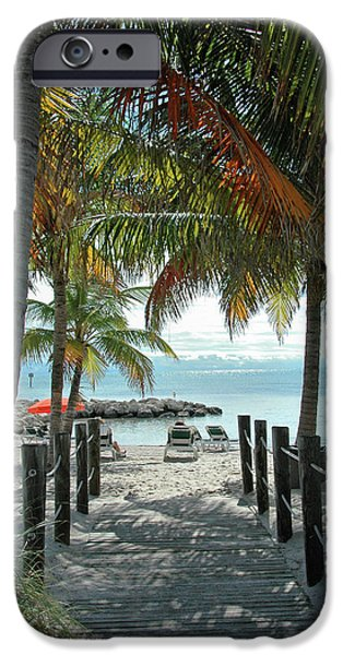 Palm Tree iPhone Cases - Path To Smathers Beach - Key West iPhone Case by Frank Mari