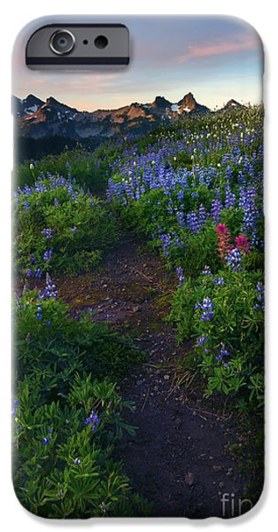 Paintbrush Photographs iPhone Cases - Path to Tatoosh iPhone Case by Mike Dawson