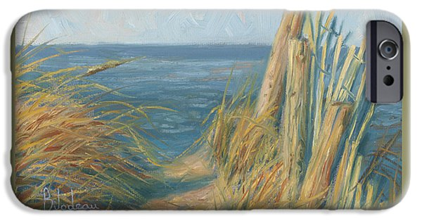 Sea iPhone Cases - Path To The Beach iPhone Case by Lucie Bilodeau