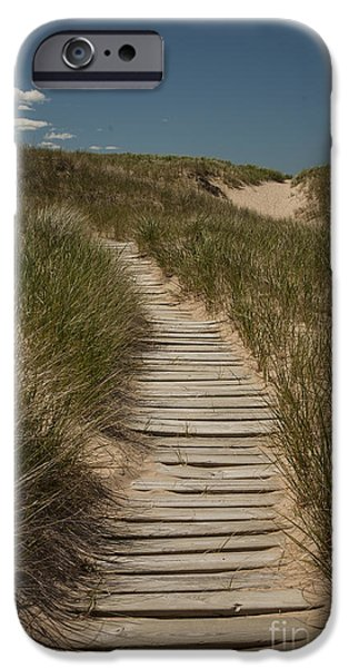 Wooden Stairs iPhone Cases - Path to the Beach iPhone Case by Timothy Johnson