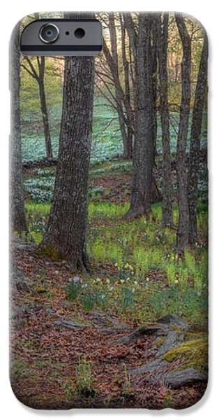 Path to the Daffodils iPhone Case by Bill  Wakeley