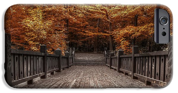 Fall Colors iPhone Cases - Path to the Wild Wood iPhone Case by Scott Norris