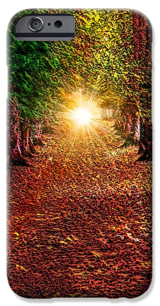 Fractal Mixed Media iPhone Cases - Pathway to the Heart iPhone Case by Michael Durst