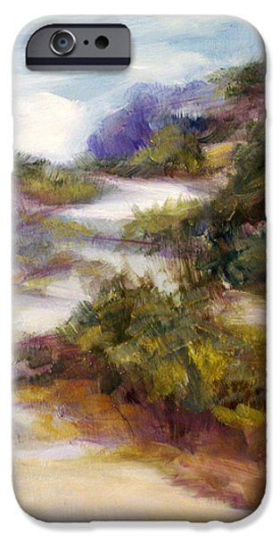 Pathway Drawings iPhone Cases - Pathway to the Shore iPhone Case by Laura Ury