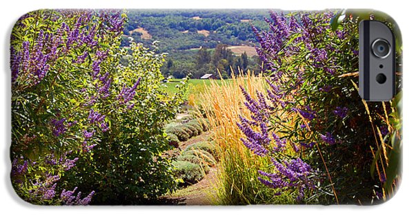 Pathway iPhone Cases - Pathway View iPhone Case by Marti Gamba