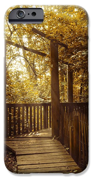 Pathway iPhone Cases - Pathway iPhone Case by Wim Lanclus