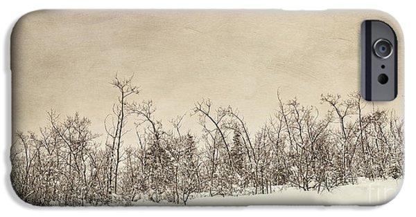 Winter Scene Photographs iPhone Cases - Patience iPhone Case by Priska Wettstein