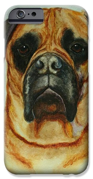 Mastif iPhone Cases - Patricia Rodrigez iPhone Case by Robin Reed Masek