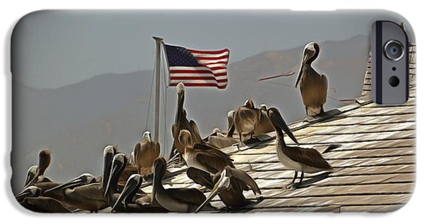 Old Glory Paintings iPhone Cases - Patriotic Pelicans  iPhone Case by Barbara Snyder