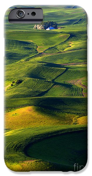 Crops iPhone Cases - Patterns of the Palouse iPhone Case by Mike Dawson