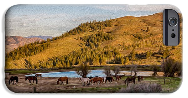 The View Mixed Media iPhone Cases - Patterson Mountain Afternoon View iPhone Case by Omaste Witkowski