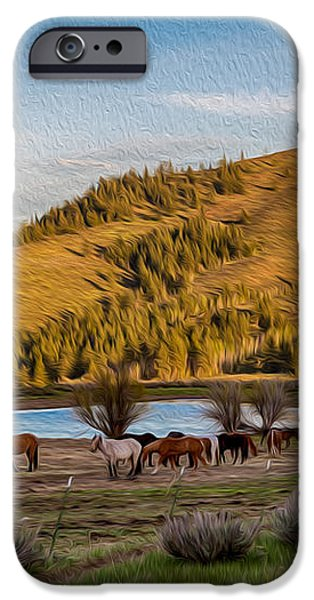 Patterson Mountain Afternoon View iPhone Case by Omaste Witkowski