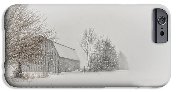 Winter Storm iPhone Cases - Peace and Quiet iPhone Case by Pamela Baker