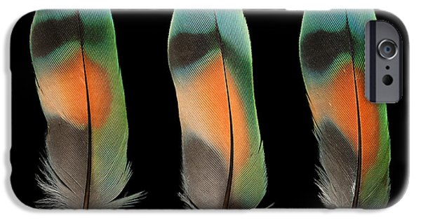 Lovebird iPhone Cases - Peach Face Lovebird iPhone Case by Chris Maynard