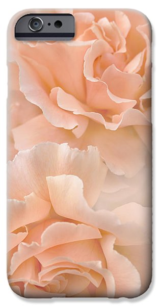 Peach Roses iPhone Cases - Peach Rose Flowers Bouquet iPhone Case by Jennie Marie Schell