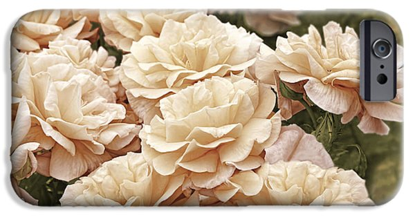 Peach Roses iPhone Cases - Peaches and Cream Rose Garden iPhone Case by Jennie Marie Schell
