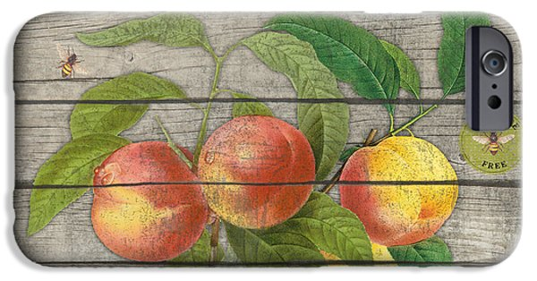 Locally Grown iPhone Cases - Peaches-JP2676 iPhone Case by Jean Plout
