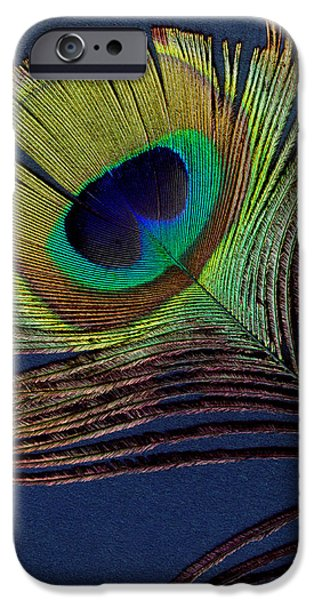 Scanography iPhone Cases - Peacock Feather iPhone Case by Ann Powell