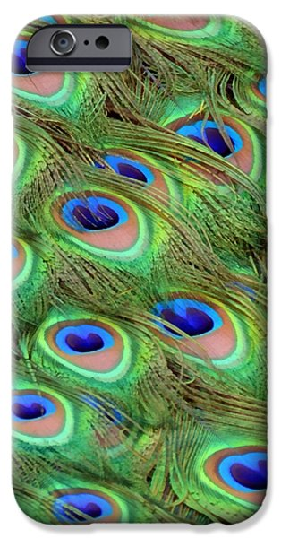 Peacock Feather Cascade iPhone Case by Angelina Vick