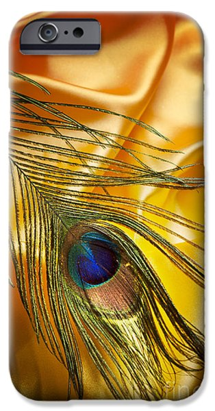 Ornament Pyrography iPhone Cases - Peacock Feather iPhone Case by Jelena Jovanovic