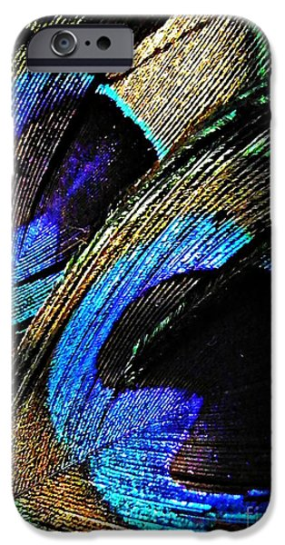 Interior Still Life iPhone Cases - Peacock Feathers iPhone Case by Sarah Loft