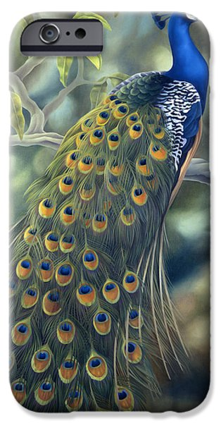Fowl iPhone Cases - Peacock iPhone Case by Laura Regan