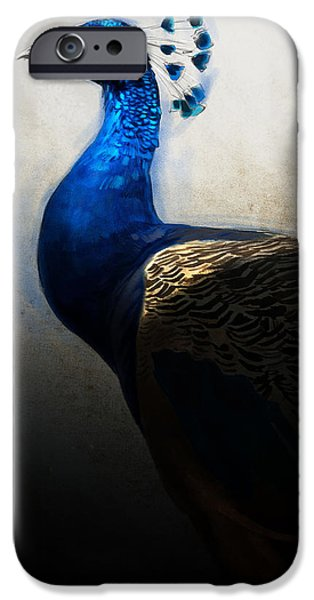 Peafowl iPhone Cases - Peacock Portrait iPhone Case by Aaron Blaise
