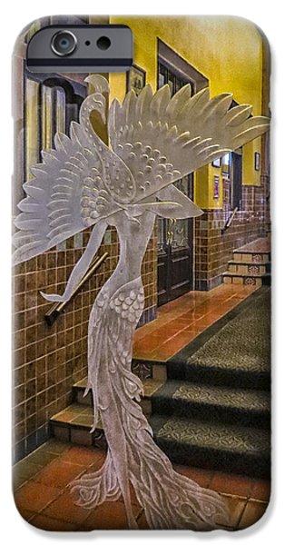 Peacock Room Door iPhone Case by Diane Wood
