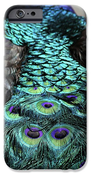 Colorful Abstract iPhone Cases - Peacock Trail iPhone Case by Karol  Livote