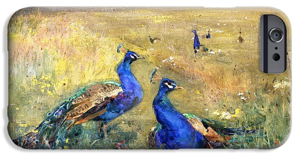 Peafowl iPhone Cases - Peacocks in a Field iPhone Case by Mildred Anne Butler
