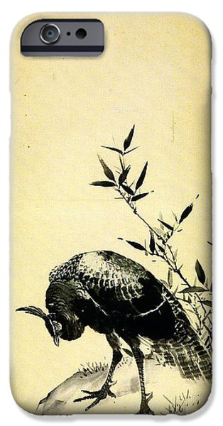 Peafowl iPhone Cases - Peafowls - right hand screen iPhone Case by Mori Sosen