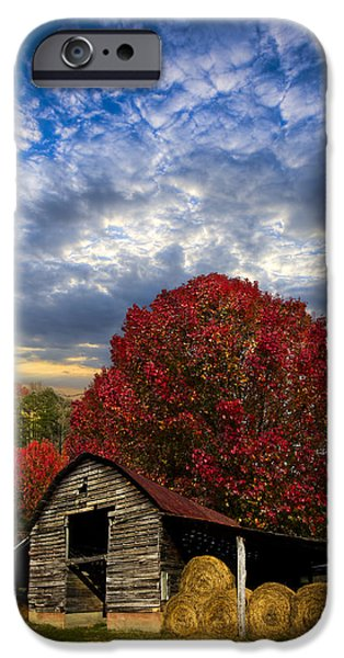 Pear Trees on the Farm iPhone Case by Debra and Dave Vanderlaan