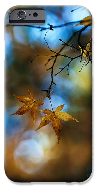 Selective Focus iPhone Cases - Pearlescent Acers iPhone Case by Mike Reid