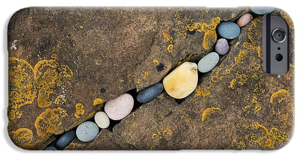 Lichen iPhone Cases - Pebbles and Rock iPhone Case by Tim Gainey