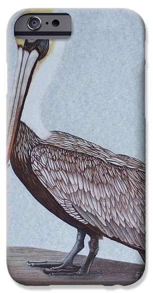 Recently Sold -  - Sea Birds iPhone Cases - Pecan Brown Pelican iPhone Case by Island Time Artwork by Dawn Nadeau Olmsted
