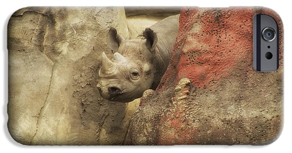 Rhinocerus iPhone Cases - Peek A Boo Rhino iPhone Case by Thomas Woolworth