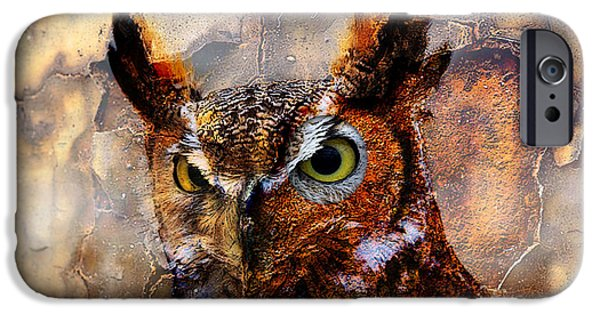 Owls iPhone Cases - Peeking Owl iPhone Case by Marvin Blaine