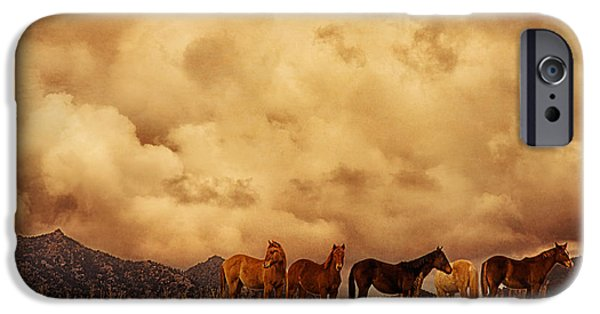 Turbulent Skies iPhone Cases - Peeples Valley Horses iPhone Case by Priscilla Burgers