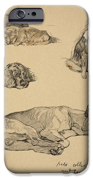 Black Dog iPhone Cases - Peke, Collie, Spaniel And German Boxer iPhone Case by Cecil Charles Windsor Aldin