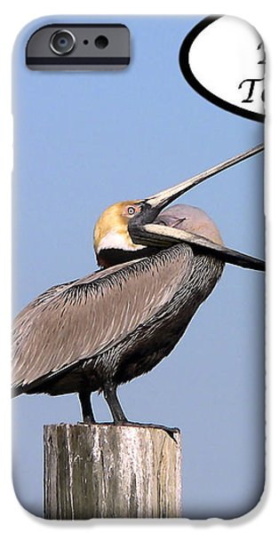 Pelican Birthday Card iPhone Case by Al Powell Photography USA
