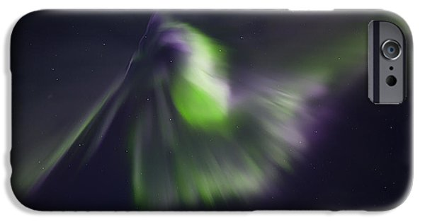 Aurora iPhone Cases - Pelican iPhone Case by Ed Boudreau